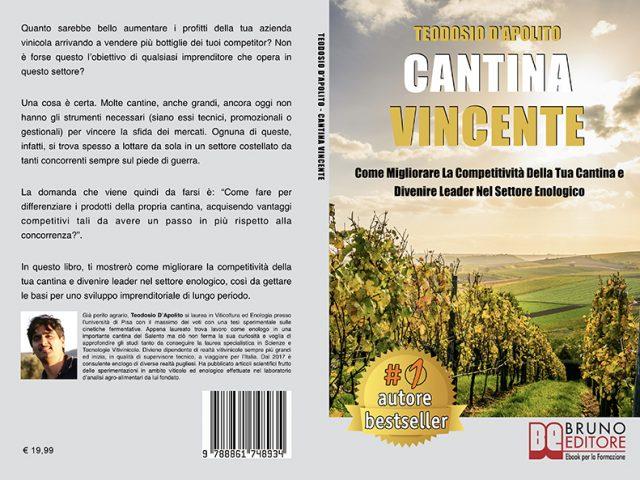 Teodosio D'Apolito, Cantina Vincente: il Bestseller su come migliorare la competività della propria cantina