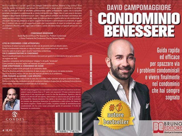 David Campomaggiore, Condominio Benessere: 2.000.000 di cause civili in Italia riguardano liti condominiali